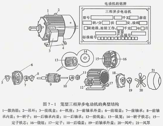 图说防爆电机内部结构原理